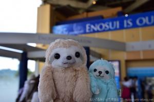 新江ノ島水族館エントランス